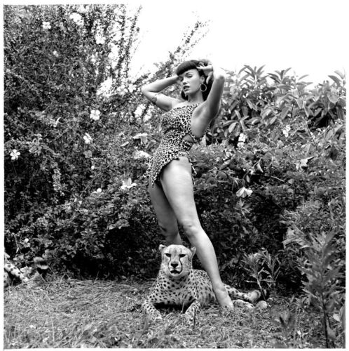 BETTIE PAGE PHOTO COLLECTION OVER 3700 QUALITY PHOTOS /& VIDEO BONUSES!