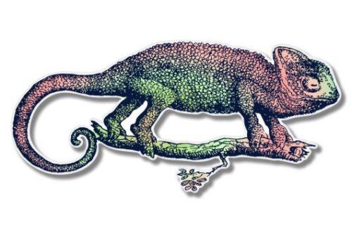 SELECT SIZE Chameleon Colorful Car Laptop Phone Vinyl Sticker