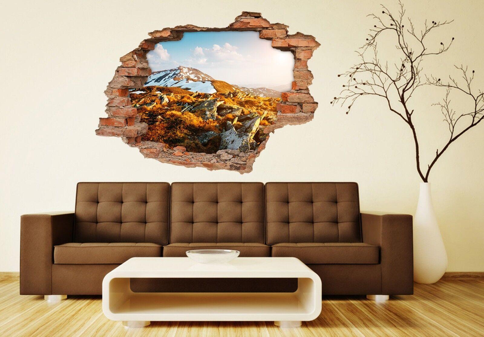 3D Berg Steine 137 Mauer Murals Mauer Aufklebe Decal Durchbruch AJ WALLPAPER DE