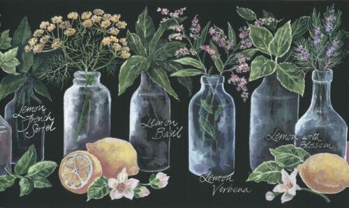 Herbal Lemon Balm Lemon geranium Black wallpaper border by York