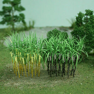 Details about MP SCENERY 30 Sugarcane Plants O Scale Architectural Model  Vegetable Railroad