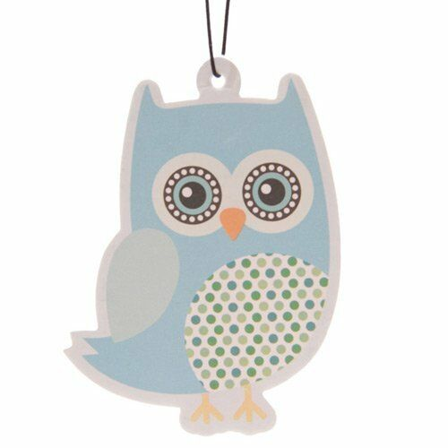 HANGING AIR FRESHENERS, MANY STYLES & FRAGRANCES, USE IN CAR, OFFICE, GYM LOCKER