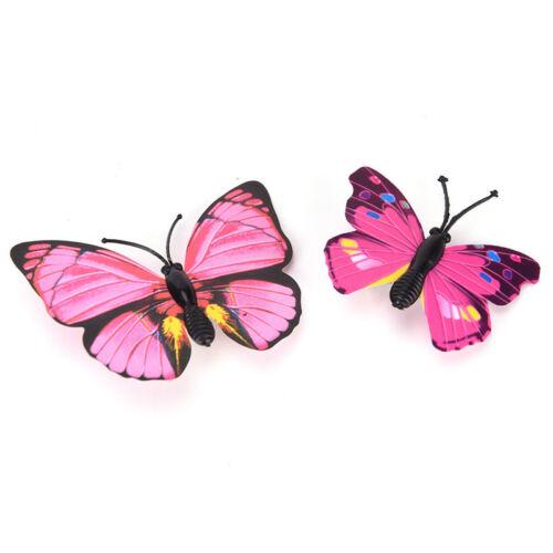 5x Schmetterling Haarspangen Braut Haarschmuck Hochzeit Fotografie Kostü YR