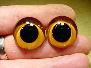 a pair vintage solid Glass Eyes size 24 mm teady bear taxidermy age 1910 Art A93