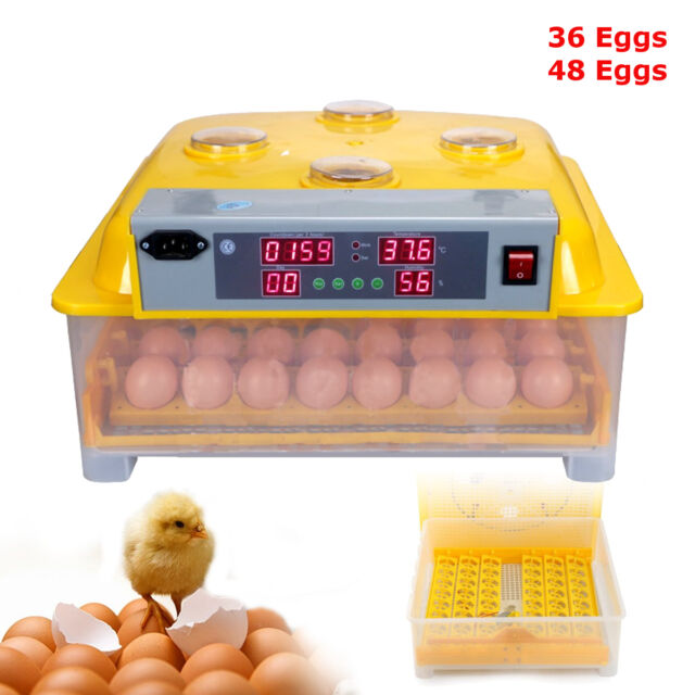 36/48Egg Automatic Incubator Digital Turner Poultry Chicken Temperature Control