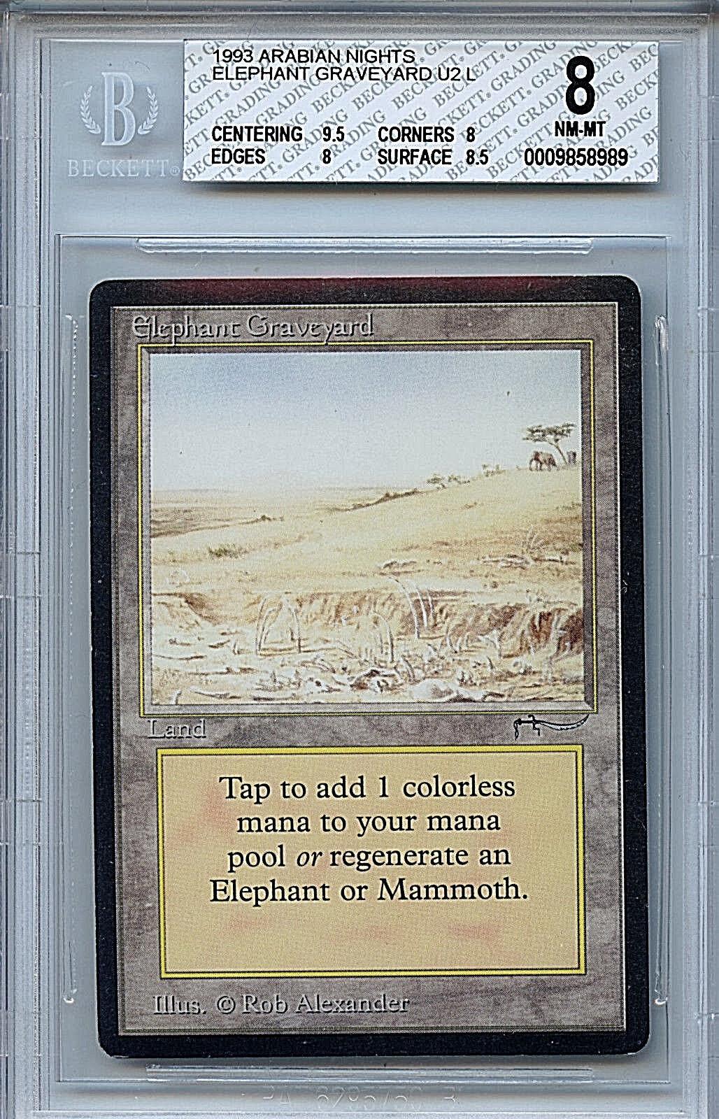MTG Arabian Nights Elephant Graveyard BGS 8.0 (8) NM MT Magic Card Anricons 8989