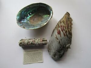 Smudge-Kit-Pheasant-Feather-Abalone-Shell-Sage-Smudge-Smudging-Tribal-Gift-Set