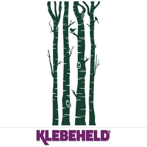 Wandtattoo Baumstämme BirkeBirkenstämme als WanddekoideeKLEBEHELD®