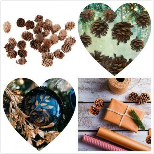 300x Lots Dried Pine Cone For Art Crafts Garland Wreath DIY Christmas Decors