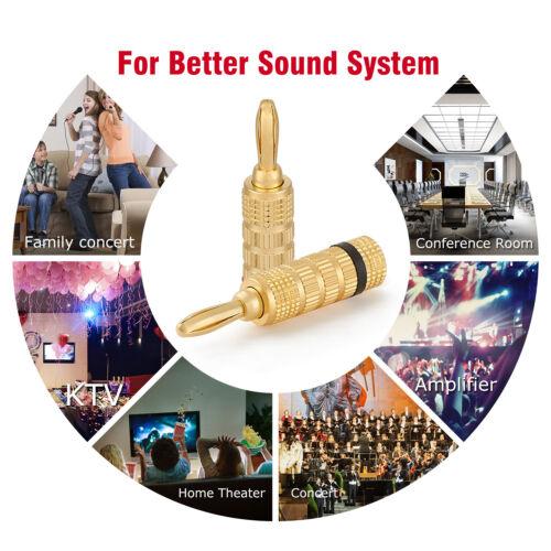 WGGE WG-3333 24k Gold Plated Speaker Banana Plugs-Closed Screw Type 5 Pairs