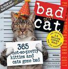 Bad Cat 2017 Calendar Workman Publishing Corporate Author
