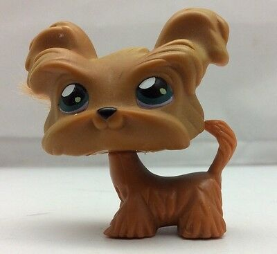 Hasbro Littlest Pet Shop Brown Dog with Green Eyes and Hair 2004 Shih Tzu