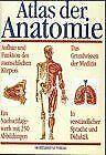 Atlas der Anatomie   Buch   Zustand gut
