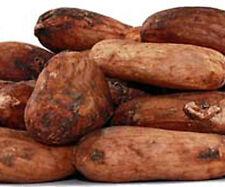 Raw CACAO BEANS, whole Organic Cocoa beans, 1oz natural stimulant