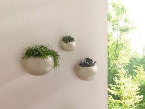 3er wand pflanzer pflanzschale pflanztopf wand blumentopf. Black Bedroom Furniture Sets. Home Design Ideas