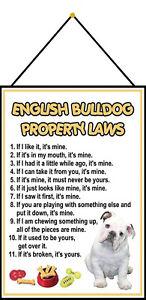 Anglais-Bulldog-Laws-Panneau-Metallique-Plaque-avec-Cordon-en-Etain-20-X-30-CM