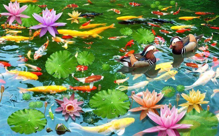 3D Wasser Fisch Blume 924 Fototapeten Wandbild Fototapete Bild Bild Bild Tapete Familie 4fb98f