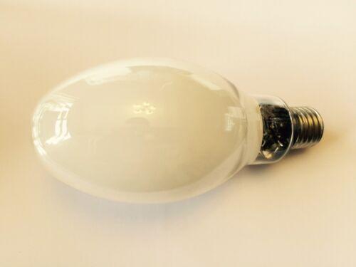 Longue durée de vie haute pression sodium elliptique lampe intérieur IGNITOR 70 W E27 son-ei