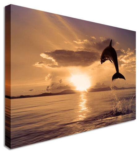 Jumping Dolphin Sunset Seascape Canvas Picture Any Size Large