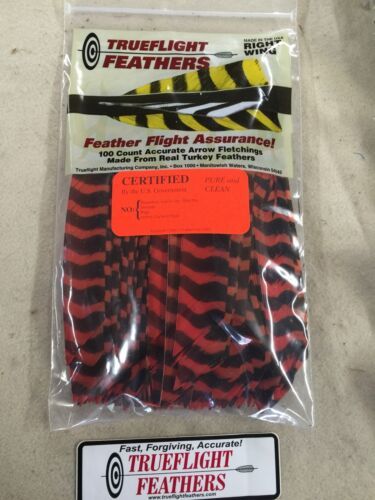 Trueflight Full Length Feathers Right Wing Orange Barred 50 Pack