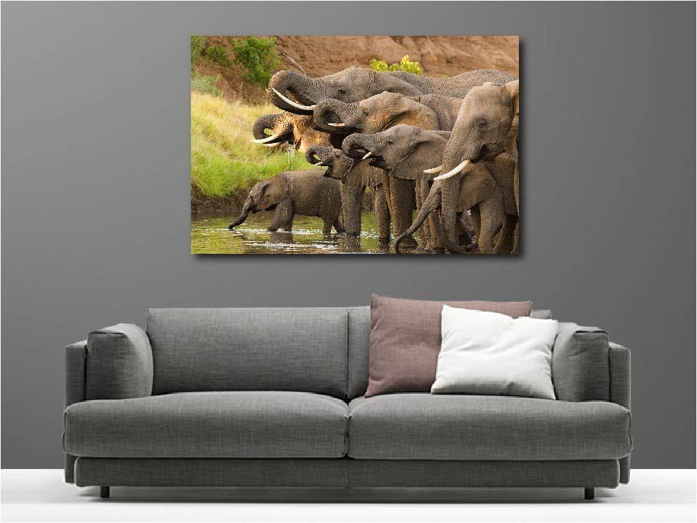 Tableaux toiles déco en kit  Troupeaux d'éléphants réf 54180163