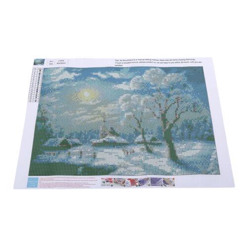 Snow Winter Pattern Diamond Painting Embroidery Cross Stitch Handwork Supply 6A