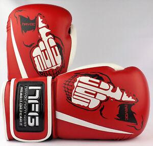 Havoc boxing gloves