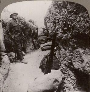 Ensoleillé Where The Anzacs Dug Eux-même En Sur Le Shelterless Pentes De Stérile Hills