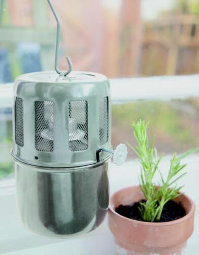 Serre Anti Frost paraffine brûleur chauffage électrique TWIN Suspension unique Wick