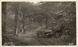 Hythe-Nelsons-Lodge-Lane-by-E-Mudge-Horse-amp-Cart