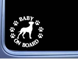 """Baby On Board Dänische Dogge Unkuppiert L526 6 """" Aufkleber Hund Aufkleber"""