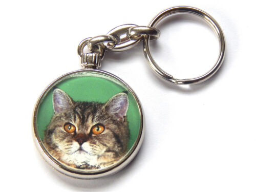 SELKIRK REX TORTIE TABBY Cat Kitten Quality Chrome Keyring Picture Both Sides