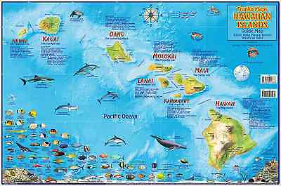 Hawaiian Islands Laminated Map Poster Oahu, Maui, Hawaii, Kauai by Franko Maps