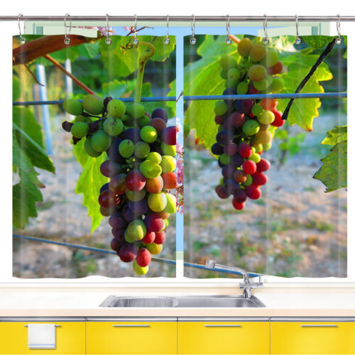 Green And Purple Grapes Kitchen Curtains 2 Panel Set Decor Window Drapes 55x39in Home Garden Treatments Hardware