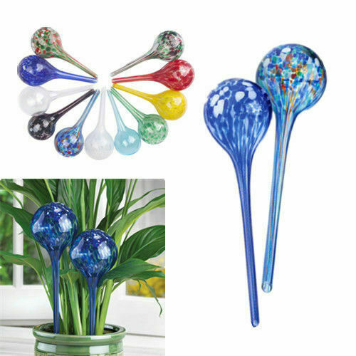 Pack of 2 Plant Watering Glass Bulbs Self Watering Plant Watering Bulb Fashion f