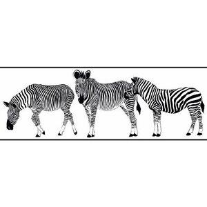 Zebra-Walking-Through-White-Wallpaper-Border-KW7765BD