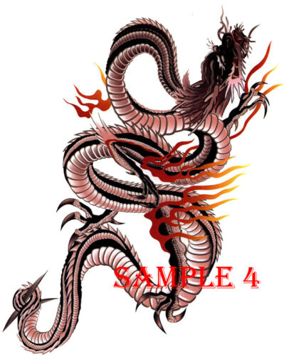 CHINESE DRAGON Iron On Transfer FOR LIGHT FABRICS ONLY Ref 01-07