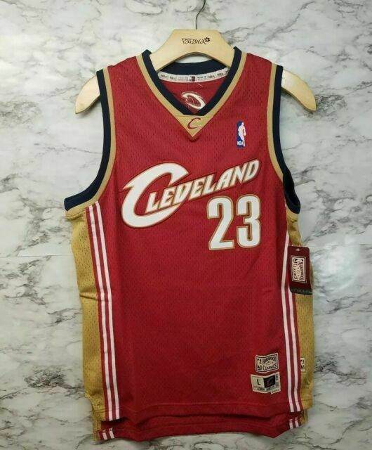 lebron james cavaliers jersey for sale