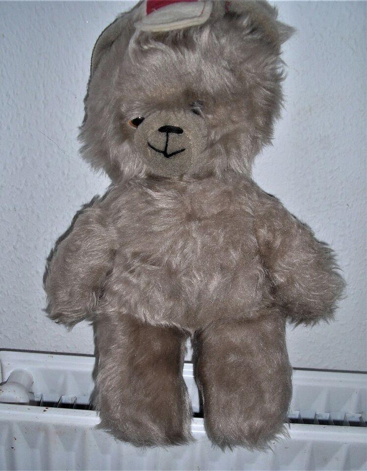 Teddy Bjørn