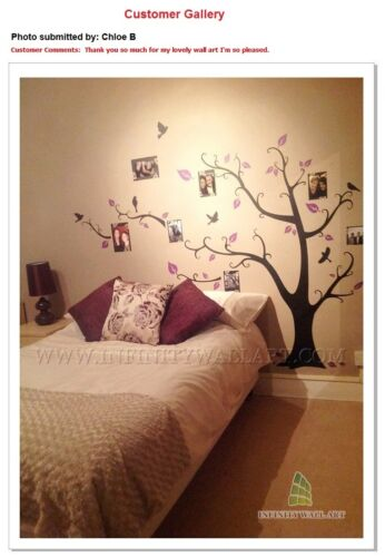 Wall Stickers Family Tree Photo Frame Quotes Art Murals Decals Vinyl Decor--P508