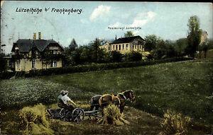 Frankenberg-Sachsen-1922-Restaurant-Luetzelhoehe-Bauer-mit-Pferden-bei-der-Arbeit