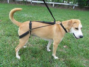 Horgan Harness NO PULL NO CHOKE back leg Dog Harness- Orthopedic Vet