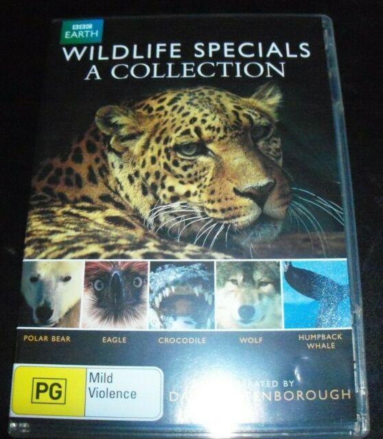 Wildlife Specials A Collection David Attenborough (Australia Region 4) DVD - NEW
