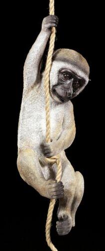 Jardin personnage singe pour pendre-grünmeerkatze sur la corde-Personnage jardin balcon Arbre