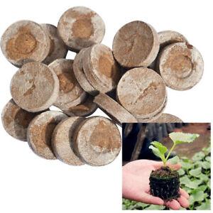 10XCoco-Coir-Fiber-Brick-Pellet-Nutrient-Soil-Plant-Seed-Starter-Compressed-Base