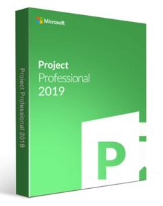 Microsoft Project 2019 Professional Key Limited Stock Ebay