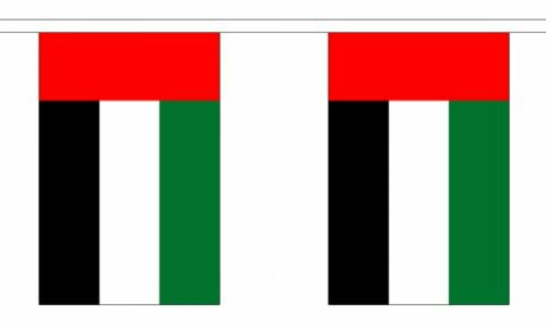 Polyester United Arab Emirates Bunting 3m 6m 9m Metre Length 10 20 30 Flags