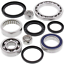 Differential-Bearing-and-Seal-Kit-1995-Yamaha-YFB250FW-Timberwolf-4x4-All-Balls miniature 1