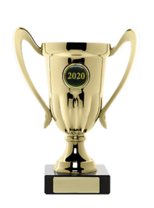Budget Plastic Cup GOLD Winner Achievement Award Trophy 165mm FREE Engraving