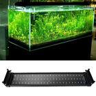 Aquarium Fish Tank SMD White + Blue LED Light Lamp 28CM 50CM 2 mode Extendable